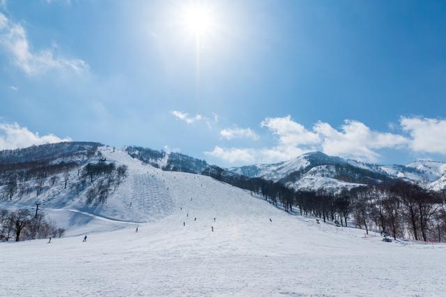 雪山でのウィンタースポーツでは「雪目」に注意|コンタクト処方箋不要.net